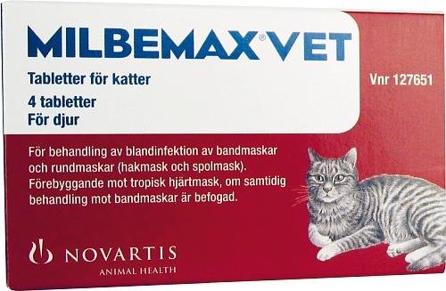 skabb katt medicin